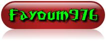 FAYOUM976
